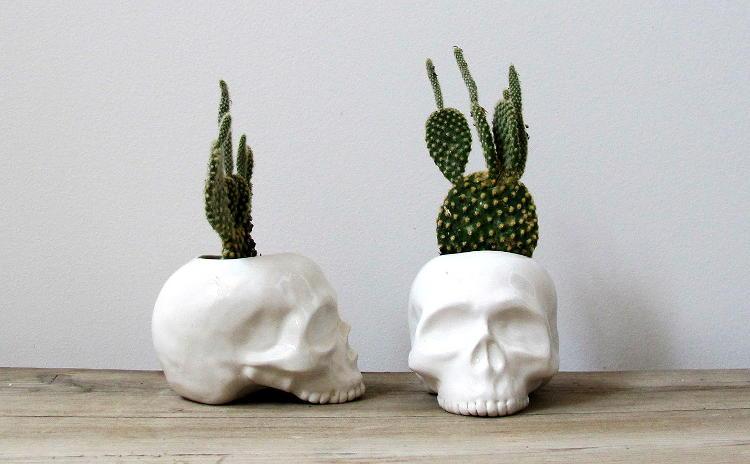 Ceramic skull planter