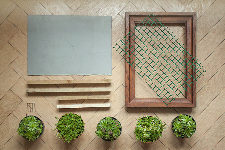 How to make a vertical garden The Crafty Gentleman