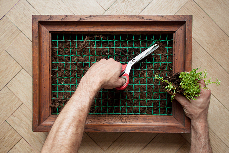 How to make a DIY vertical garden wall succulent frame