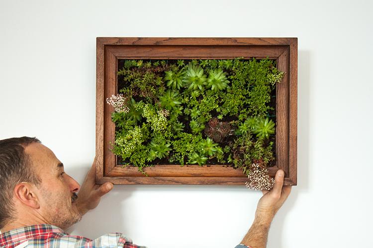 How to make a DIY vertical garden wall succulent frame