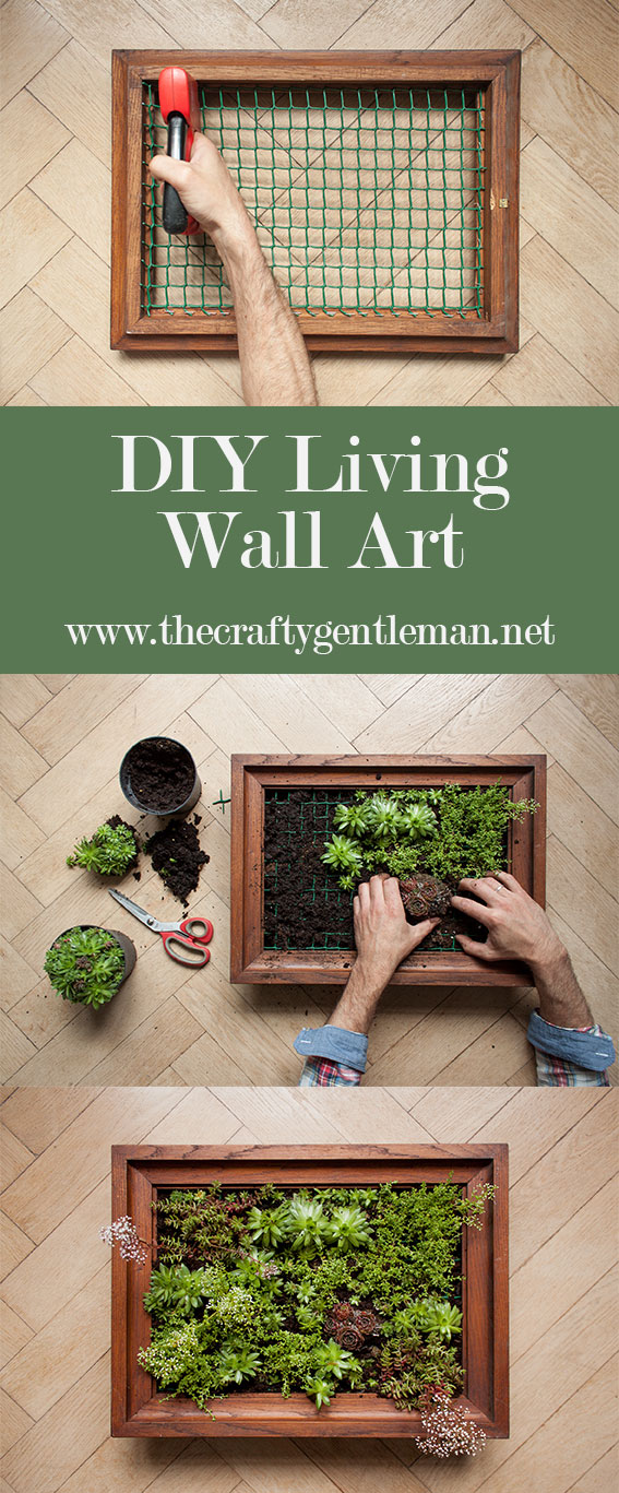 Learn how to make your own living wall art vertical garden. Click through to see the step by step tutorial